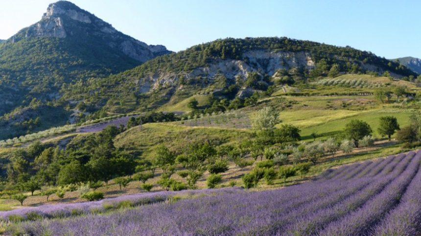 Choisissez la Drôme Provençale pour votre future destination