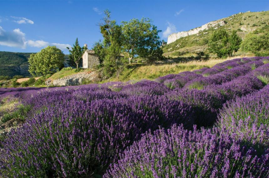 Vos étapes incontournable au cœur de la Drôme Provençale